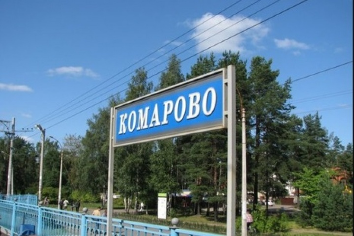 фото ЗакС политика После проверки КСП оштрафована администрация МО Поселок Комарово