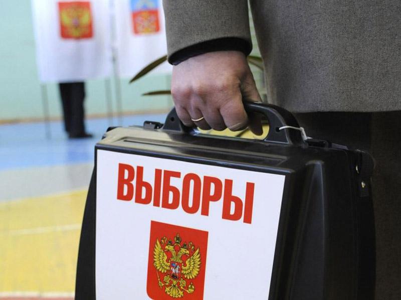 фото ЗакС политика Общественная палата сможет направлять наблюдателей на муниципальные выборы