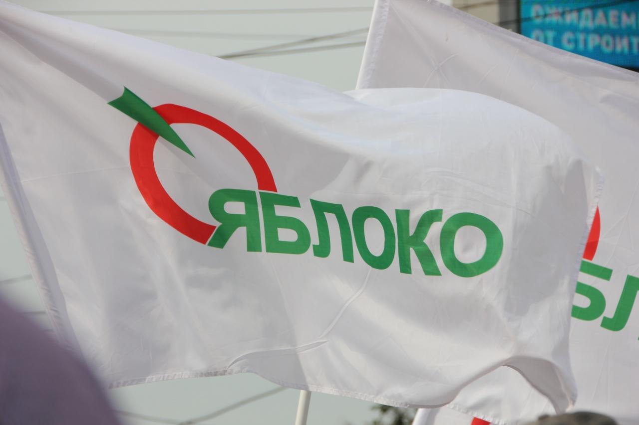 фото ЗакС политика «Яблочникам» отказали в регистрации в МО «Аптекарский остров» из-за неправильно указанных округов